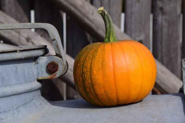 agriculture color fall farm
