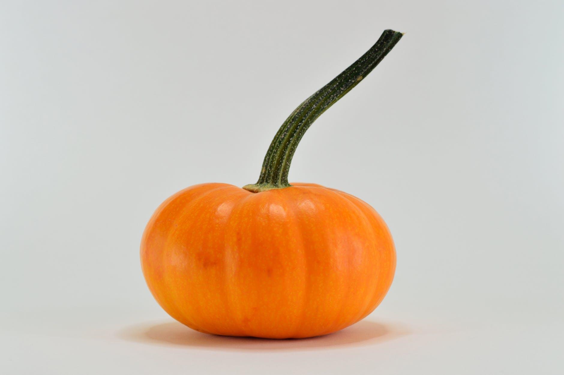 close up photography of a pumpkin