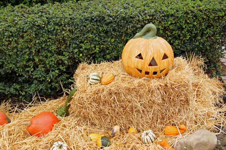 jack o lantern on hay stack during day