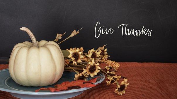 thanksgiving-2903166__340 (1)